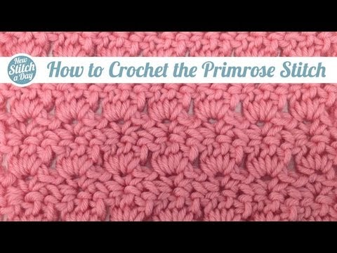 Tuesday's Tutorial The Primrose Stitch with New Stitch A Day